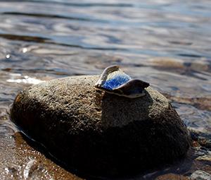 Järvi -rintaneula. Kirsi Manninen.