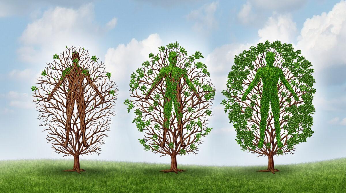 kolme puuta ihmishahmoilla